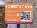 forestacion02