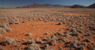 'Círculos de hadas' en el desierto de Namibia (África) / Jen Guyton