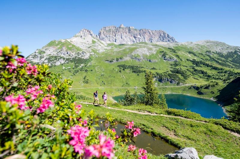 ¡A las montañas! Los valles alpinos de Austria